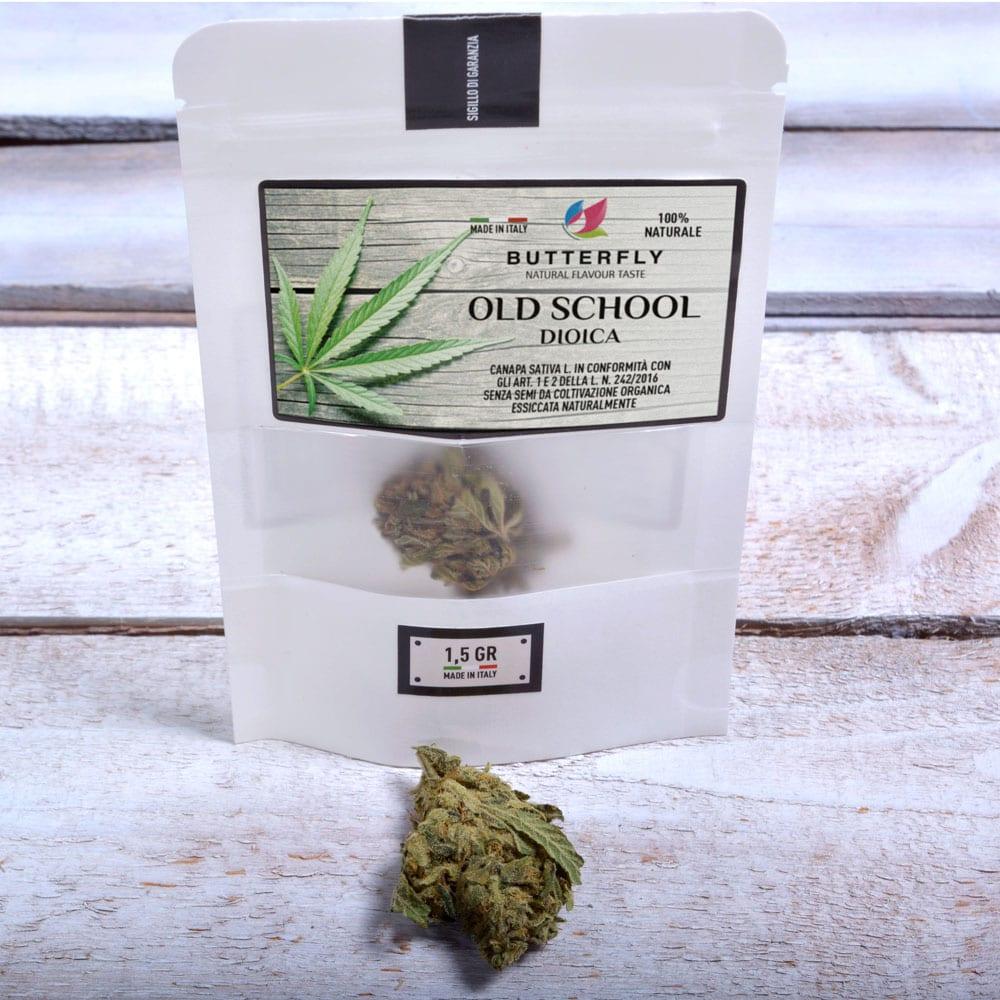 Cannabis Legale - Come un Prodotto ha Raggiunto il Successo.
